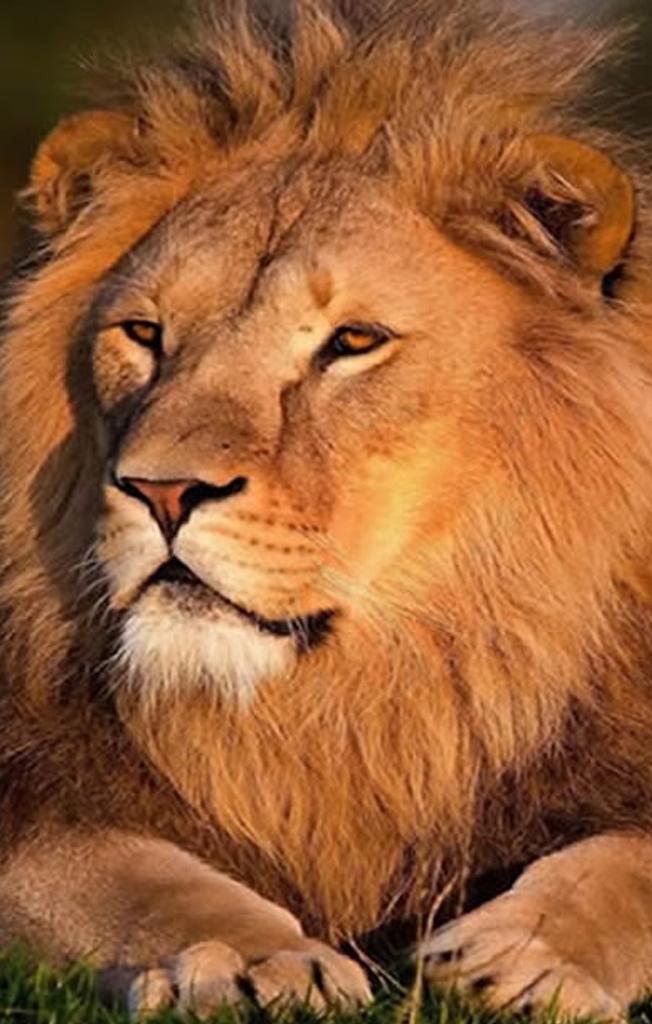 Explore-Safaris_Uganda
