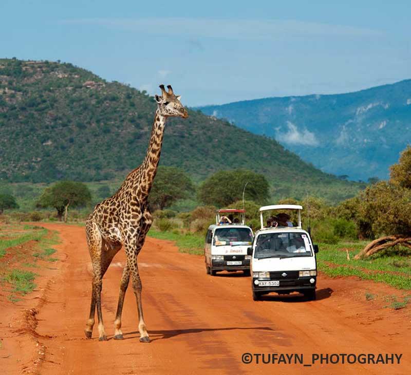 tsavo_east national parks