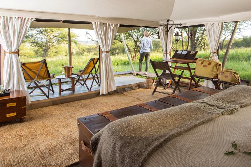 Explore_SerengetiPioneer—Tent-Interior-(c)-Silverless