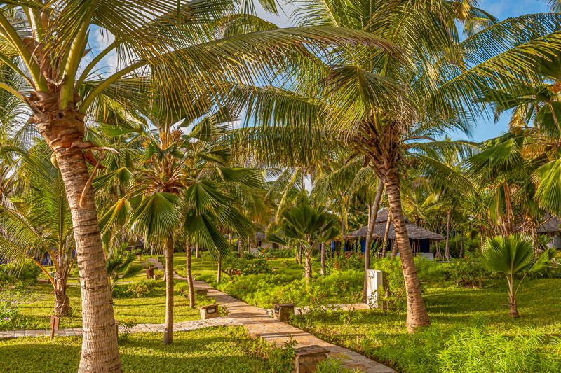 Explore_The-Palms-Gardens.