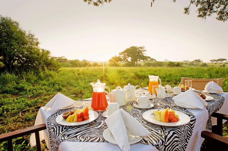Explore_Tarangire-Sopa-Bush-Breakfast