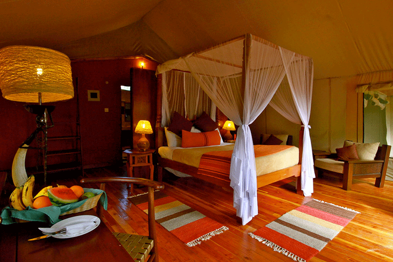 Explore_07-mara_leisure_camp_jumbo_tent_interiors-hi-(1)