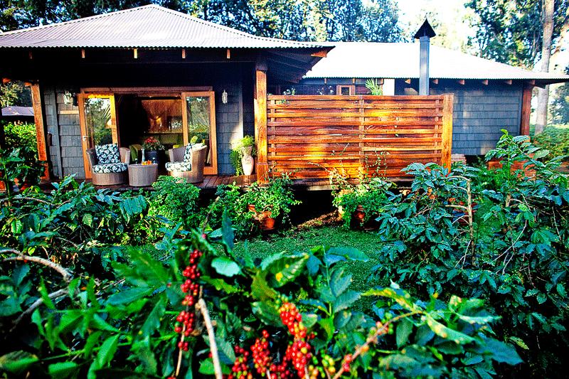 Explore_ArushaCoffeeLodge—Plantation-Suite-Exterior