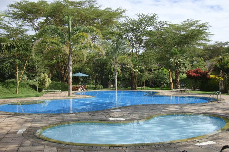 Explore_Lake-Naivasha-Simba4