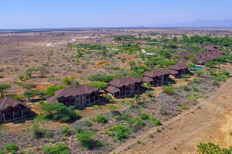 Explore_Samburu_simba1